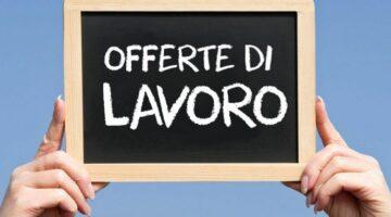 OFFERTE DI LAVORO – AGGIORNAMENTO 24.06.2021